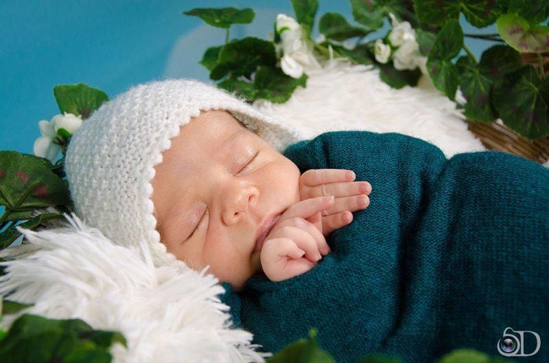 Бебешка фотосесия